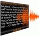Программа читает вслух RSS каналы на которые Вы подписаны.