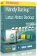 Бэкап Lotus Notes для Handy Backup - (Новософт)