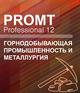 PROMT Professional Горнодобывающая промышленность и металлургия 12 - (PROMT)