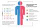 Диспансеризация определенных групп взрослого населения. Сетевая версия 3.1 (Голубенко Сергей Викторович)
